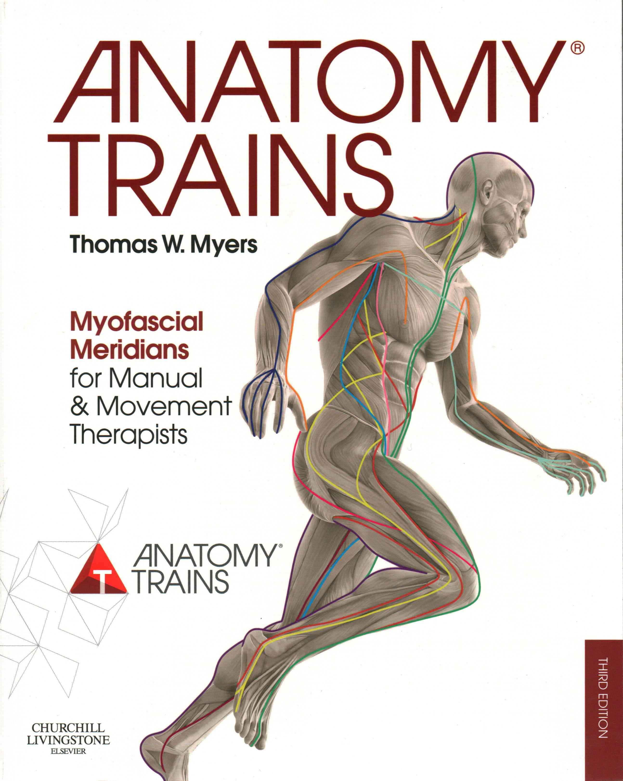 Anatomy Trains By Myers, Thomas W.